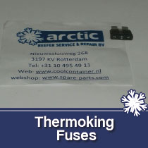 Thermoking Fuses